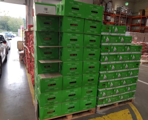 Buchenholz Greenheat